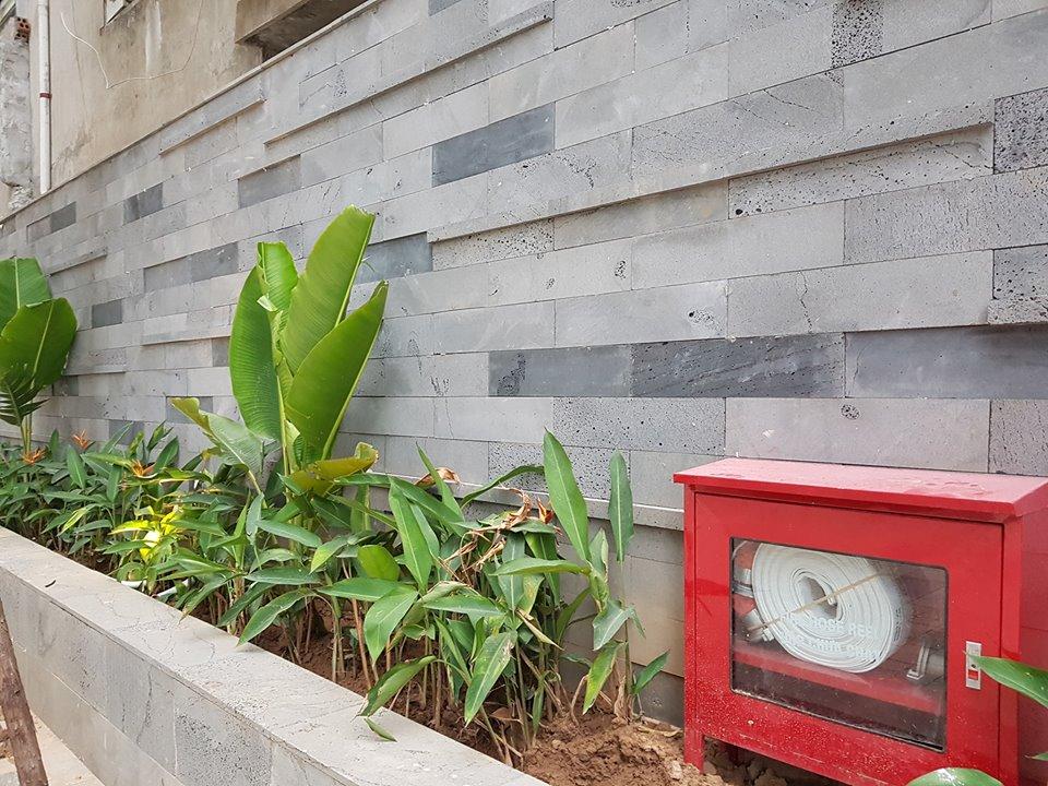 Đá ong xám ốp tường vườn tiểu cảnh nhỏ